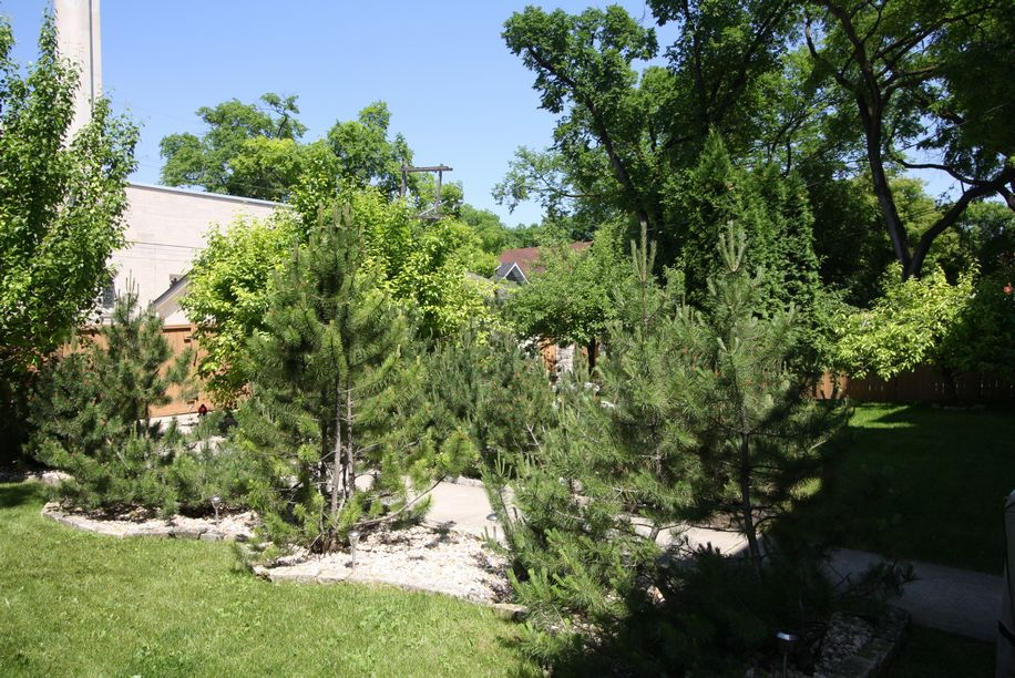 3-1055 Dorchester Avenue, Winnipeg, Manitoba  R3M 0R2 - Photo 15 - 1105786