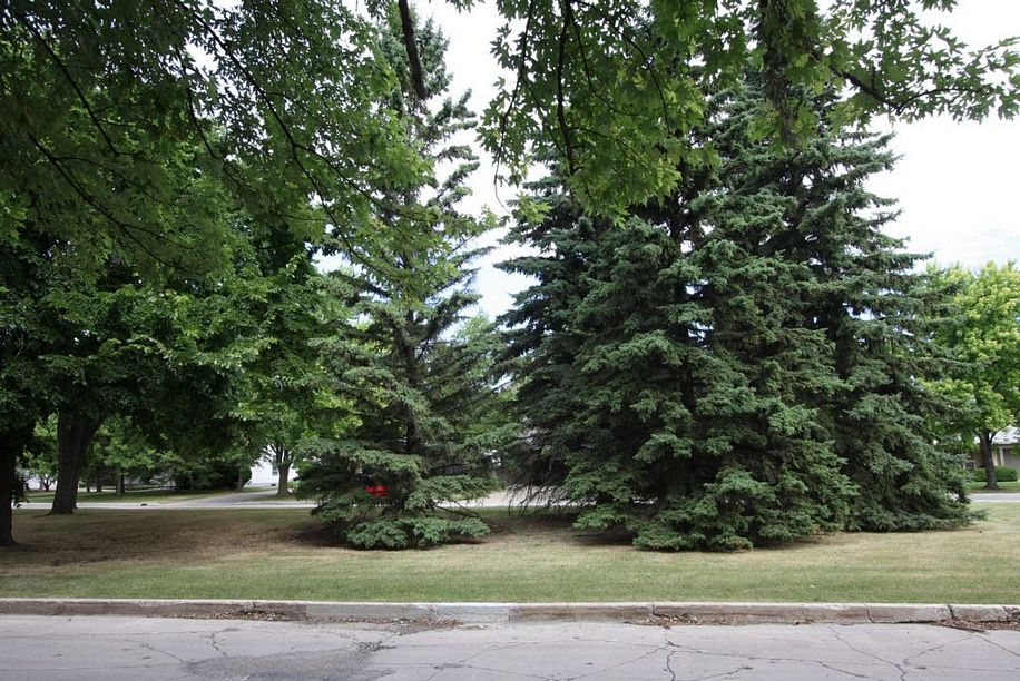 6 Holdsworth Avenue, Winnipeg, Manitoba  R3P 0P2 - Photo 19 - 1116400