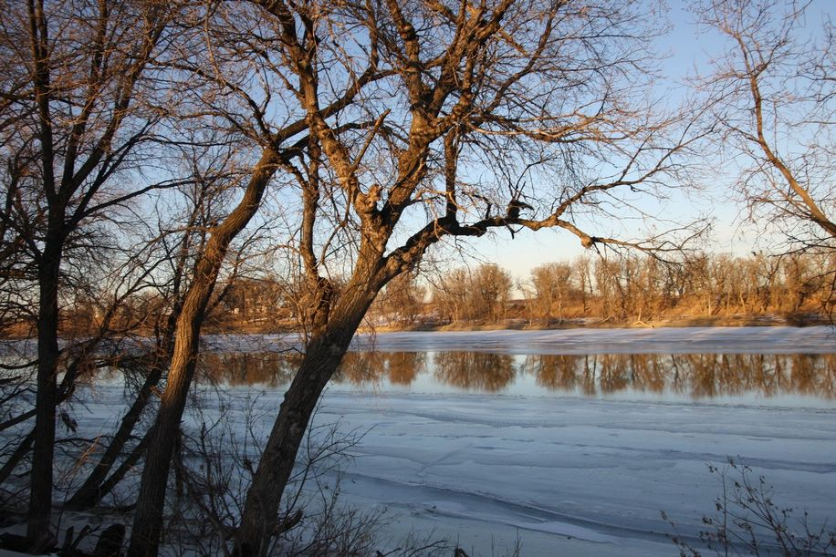 25 Marston Drive, Winnipeg, Manitoba  R4H 1J7 - Photo 20 - 1200029