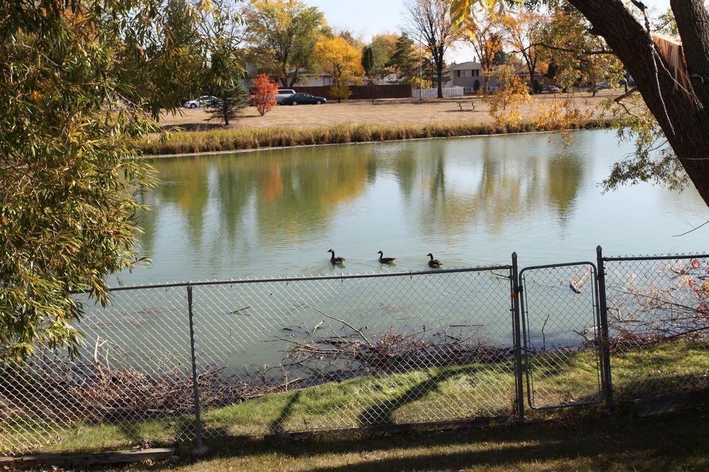 75 Stillwater Road, Winnipeg, Manitoba  R2J 2R5 - Photo 19 - 1220688