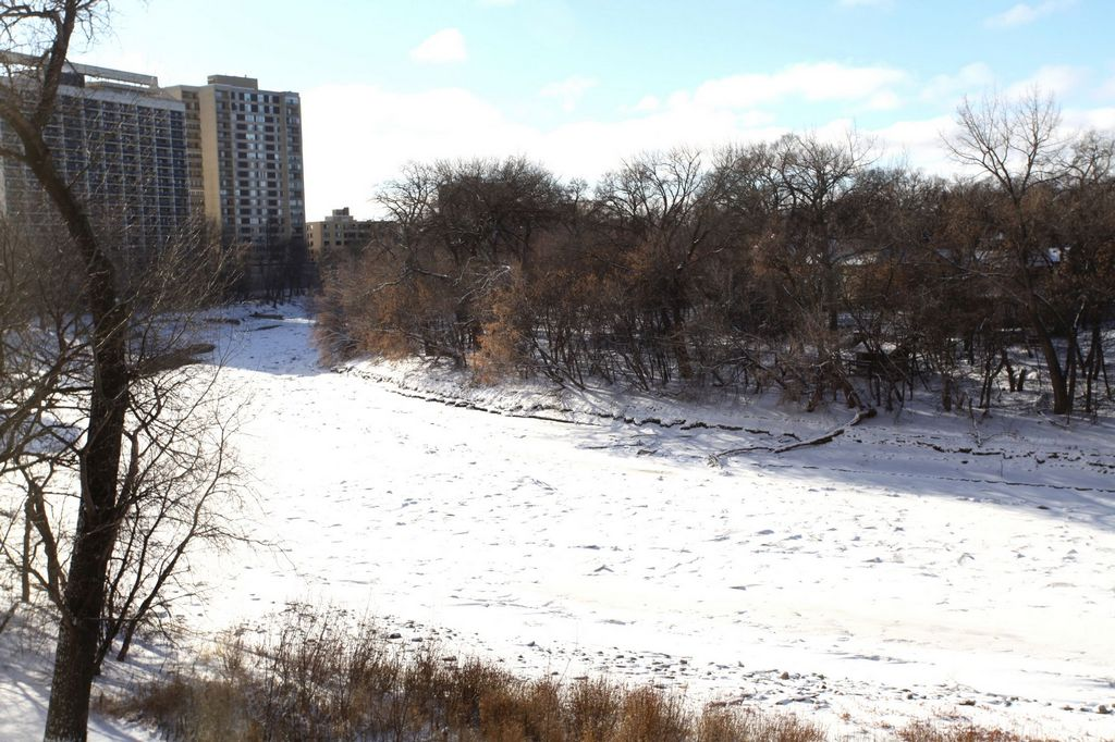 304-141 Wellington Crescent, Winnipeg, Manitoba  R3M 3X3 - Photo 24 - 1325204