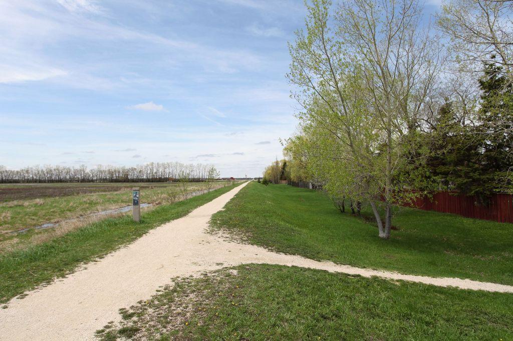 943 Dale Boulevard, Winnipeg, Manitoba  R3R 2R1 - Photo 25 - 1412067