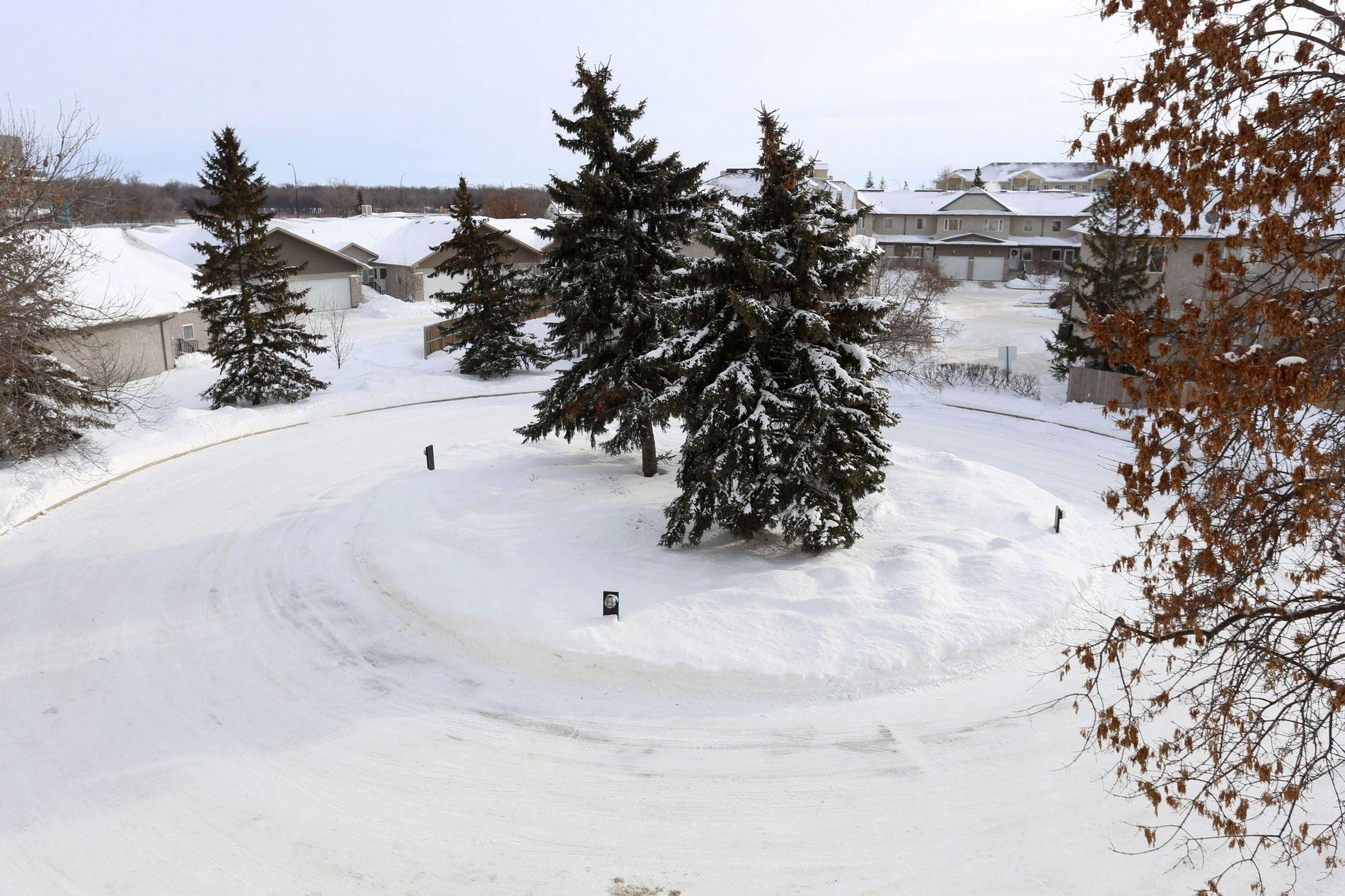 305-3285 Pembina Highway, Winnipeg, Manitoba  R3V 1T7 - Photo 18 - 1701130