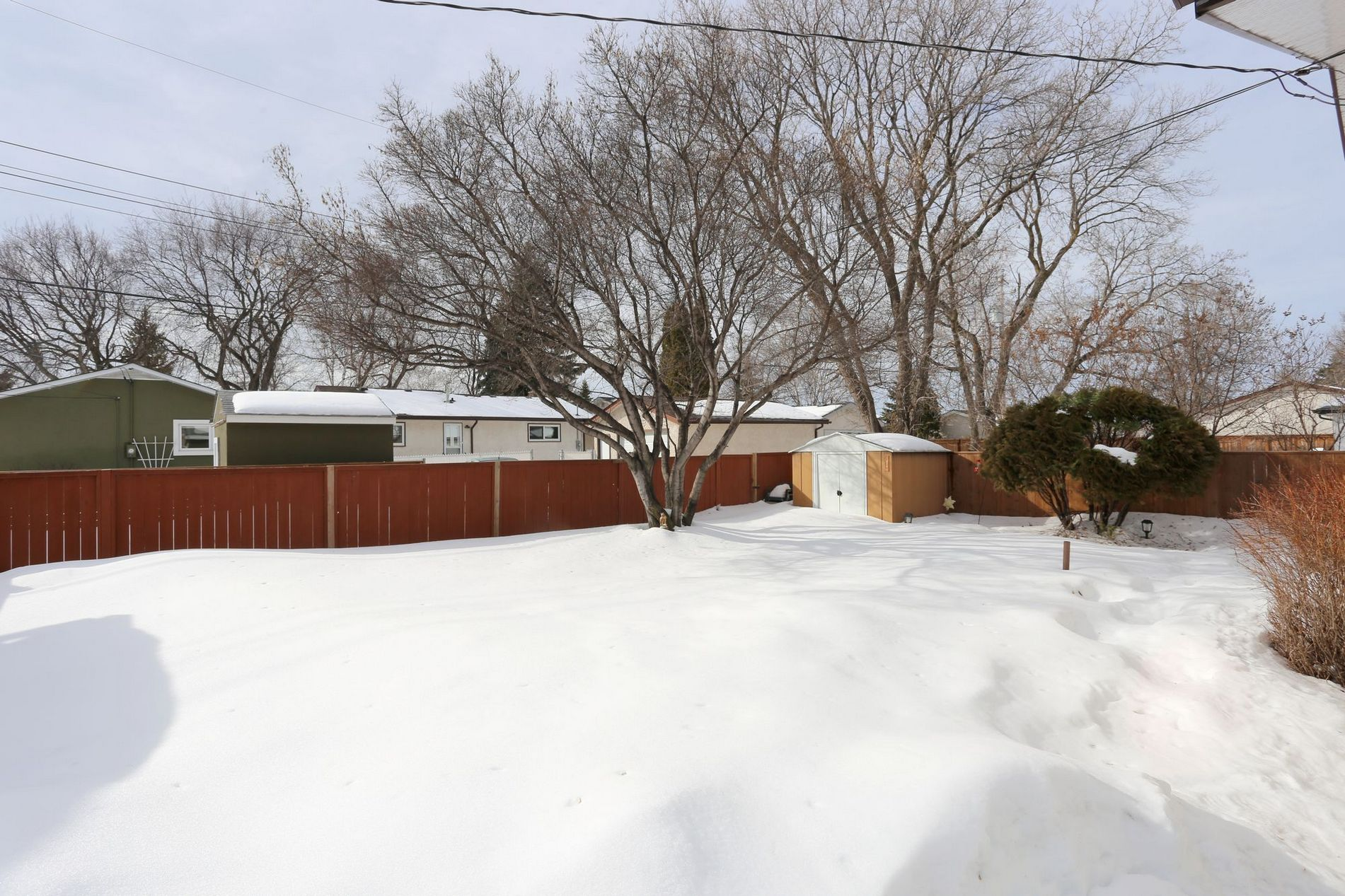 342 Woodbine Avenue, Winnipeg, Manitoba  R2V 4H4 - Photo 22 - 1703630
