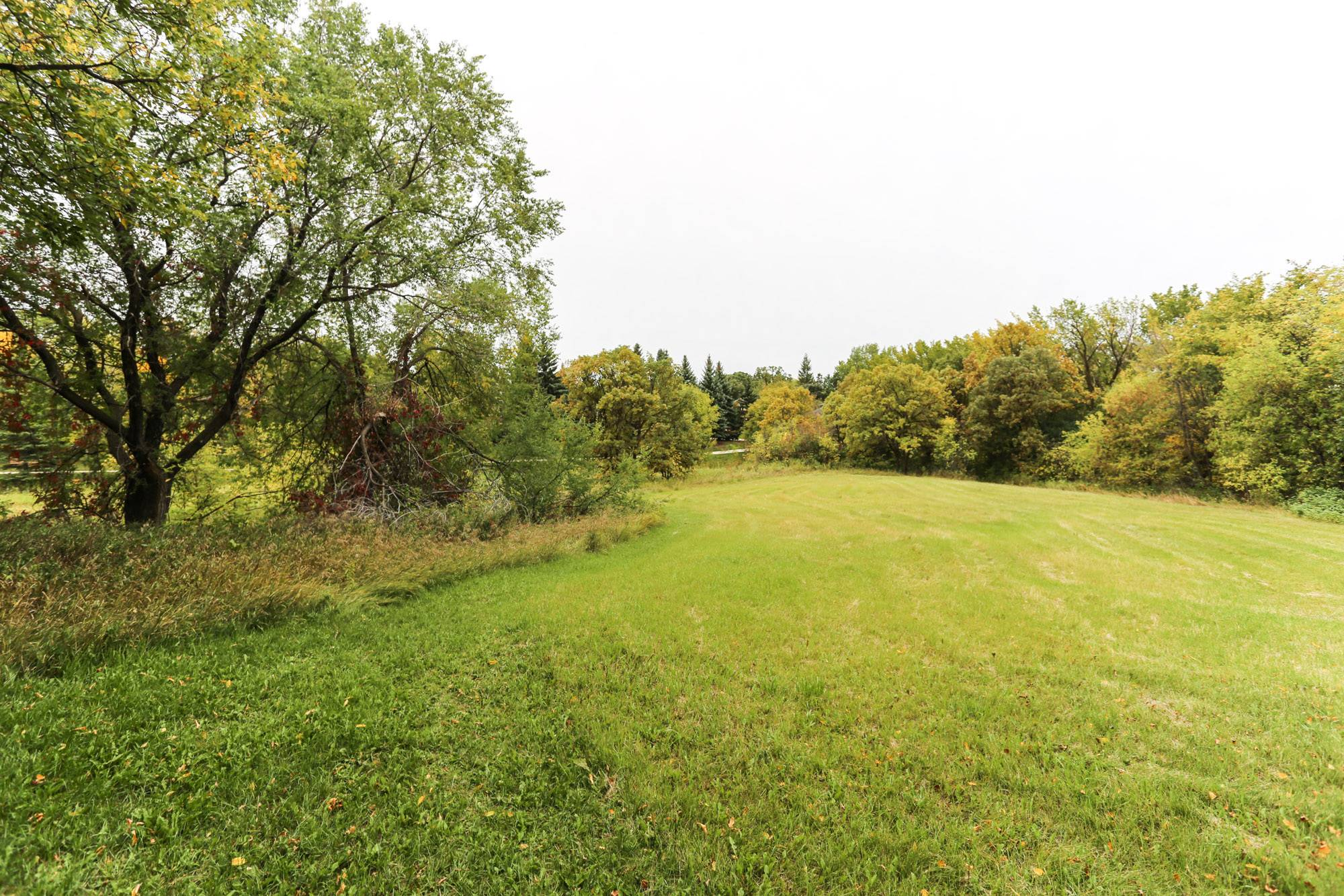 316 Bonner Ave, Winnipeg, Manitoba  R2G 1B5 - Photo 42 - 1825981